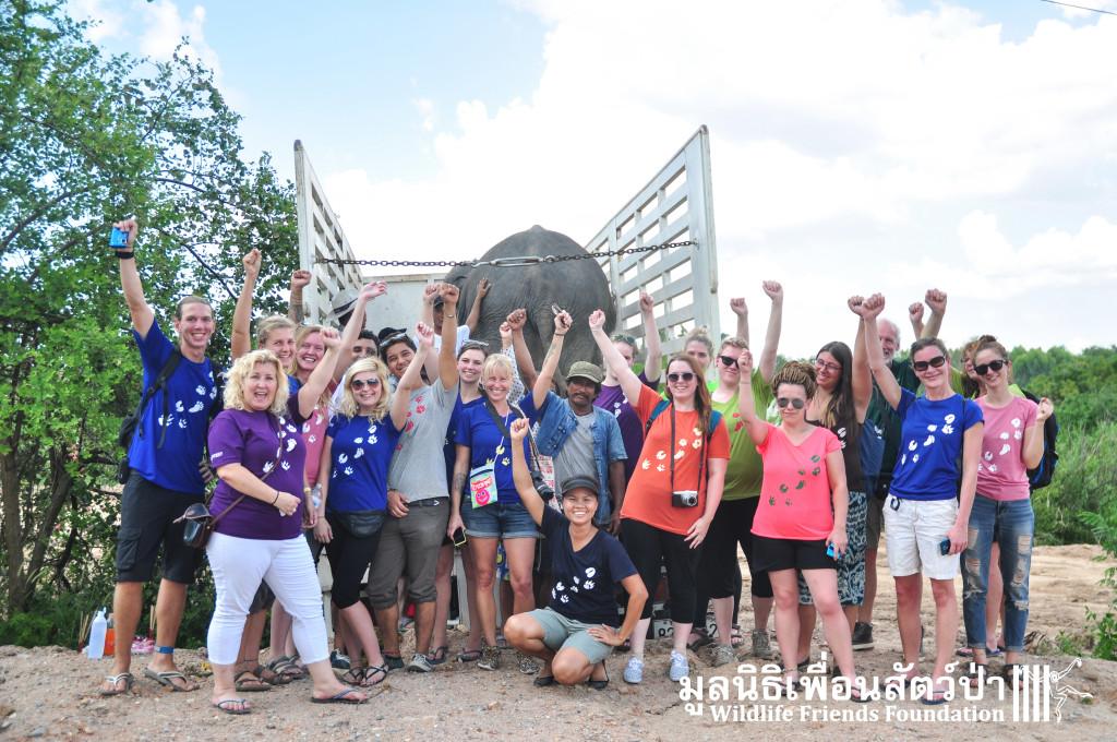 Elephant rescue ChokDee 241115 1252
